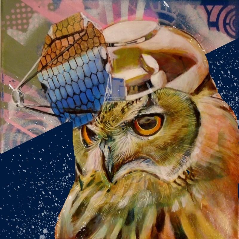 owlsatblue